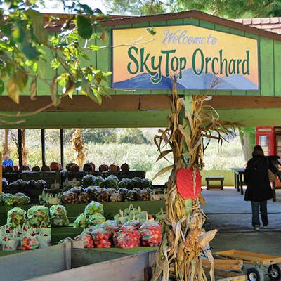 Skytop Orchard